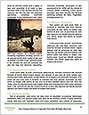 0000087010 Word Template - Page 4