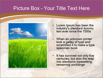 0000087015 PowerPoint Template - Slide 13