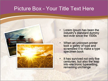 0000087015 PowerPoint Template - Slide 20