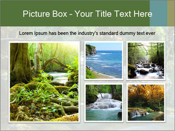 Purling falls PowerPoint Template - Slide 19