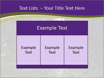 0000087020 PowerPoint Template - Slide 59