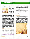 0000087023 Word Template - Page 3