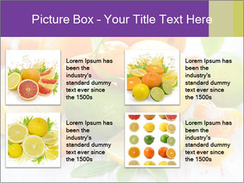 0000087025 PowerPoint Template - Slide 14
