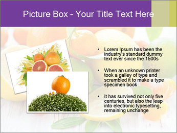 0000087025 PowerPoint Template - Slide 20