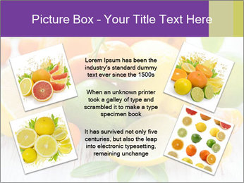 0000087025 PowerPoint Template - Slide 24