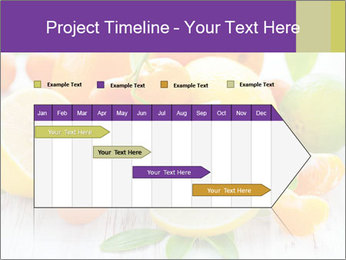0000087025 PowerPoint Template - Slide 25