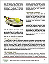 0000087028 Word Template - Page 4