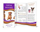 0000087045 Brochure Template
