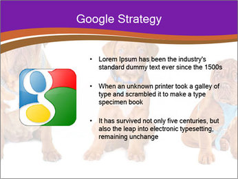 0000087045 PowerPoint Template - Slide 10