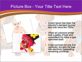 0000087045 PowerPoint Template - Slide 20
