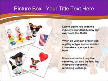 0000087045 PowerPoint Template - Slide 23
