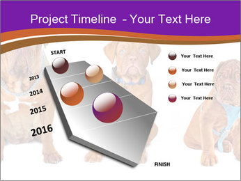 0000087045 PowerPoint Template - Slide 26
