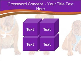 0000087045 PowerPoint Template - Slide 39