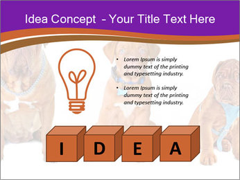 0000087045 PowerPoint Template - Slide 80
