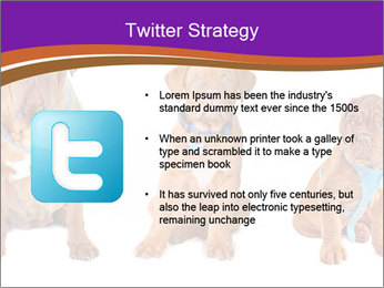0000087045 PowerPoint Template - Slide 9