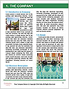 0000087058 Word Template - Page 3