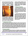 0000087063 Word Template - Page 4