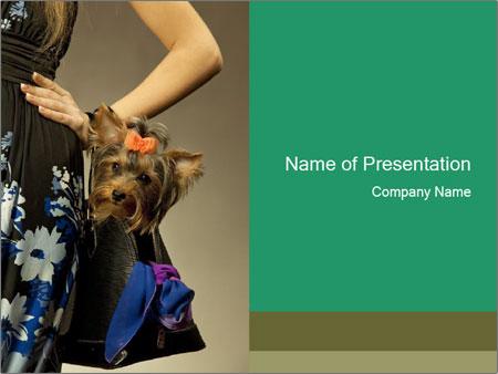 Glamor woman PowerPoint Template