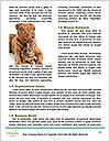 0000087069 Word Templates - Page 4