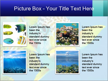 0000087071 PowerPoint Template - Slide 14