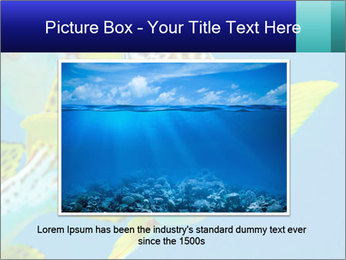 0000087071 PowerPoint Template - Slide 15