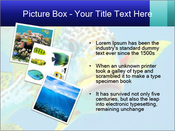 0000087071 PowerPoint Template - Slide 17