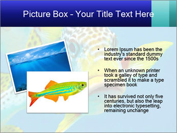 0000087071 PowerPoint Template - Slide 20
