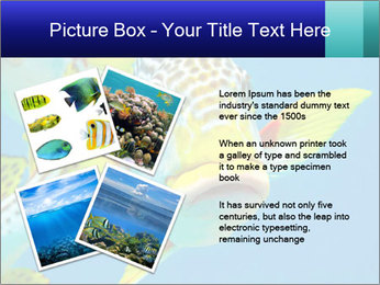 0000087071 PowerPoint Template - Slide 23