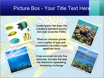 0000087071 PowerPoint Template - Slide 24