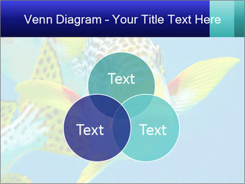 0000087071 PowerPoint Template - Slide 33