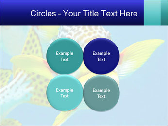 0000087071 PowerPoint Template - Slide 38