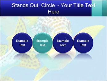 0000087071 PowerPoint Template - Slide 76