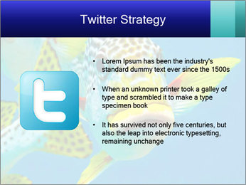 0000087071 PowerPoint Template - Slide 9