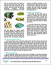 0000087071 Word Templates - Page 4