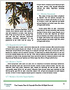 0000087073 Word Templates - Page 4