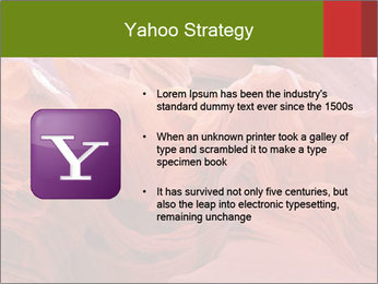 Fiery color in the stone PowerPoint Template - Slide 11