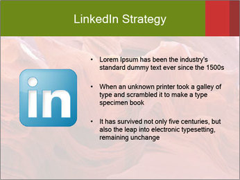 Fiery color in the stone PowerPoint Template - Slide 12