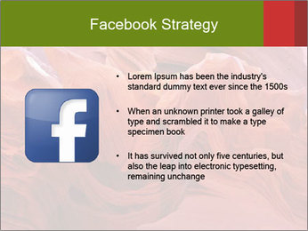 Fiery color in the stone PowerPoint Template - Slide 6