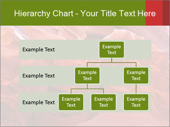 0000087074 PowerPoint Template - Slide 67
