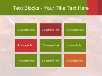 Fiery color in the stone PowerPoint Template - Slide 68