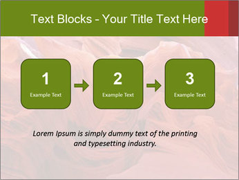 Fiery color in the stone PowerPoint Template - Slide 71