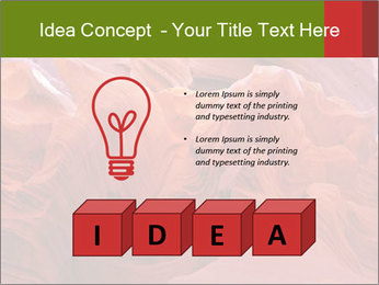 Fiery color in the stone PowerPoint Template - Slide 80