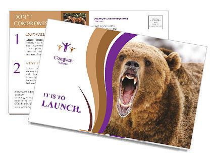 0000087081 Postcard Templates