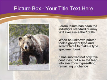 0000087081 PowerPoint Template - Slide 13