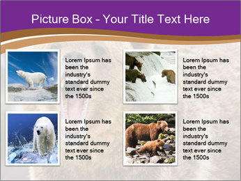 0000087081 PowerPoint Template - Slide 14