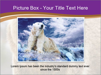 0000087081 PowerPoint Template - Slide 15