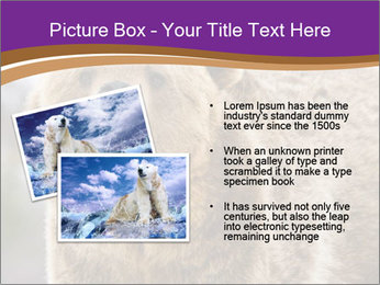 0000087081 PowerPoint Template - Slide 20