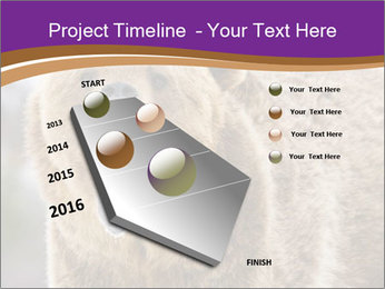0000087081 PowerPoint Template - Slide 26