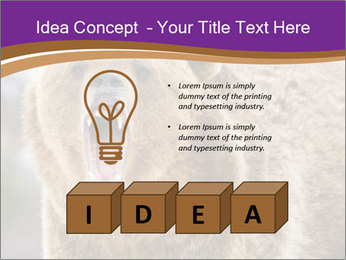 0000087081 PowerPoint Template - Slide 80