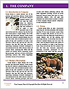 0000087081 Word Templates - Page 3